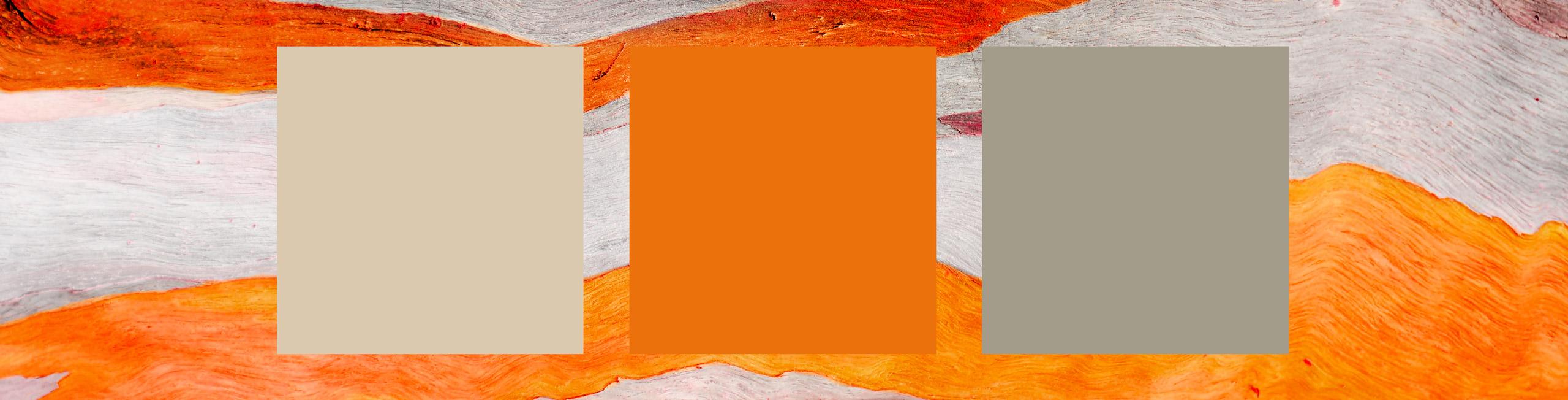 Esempio di colori per nastri sahariani in seta, cotone e lino